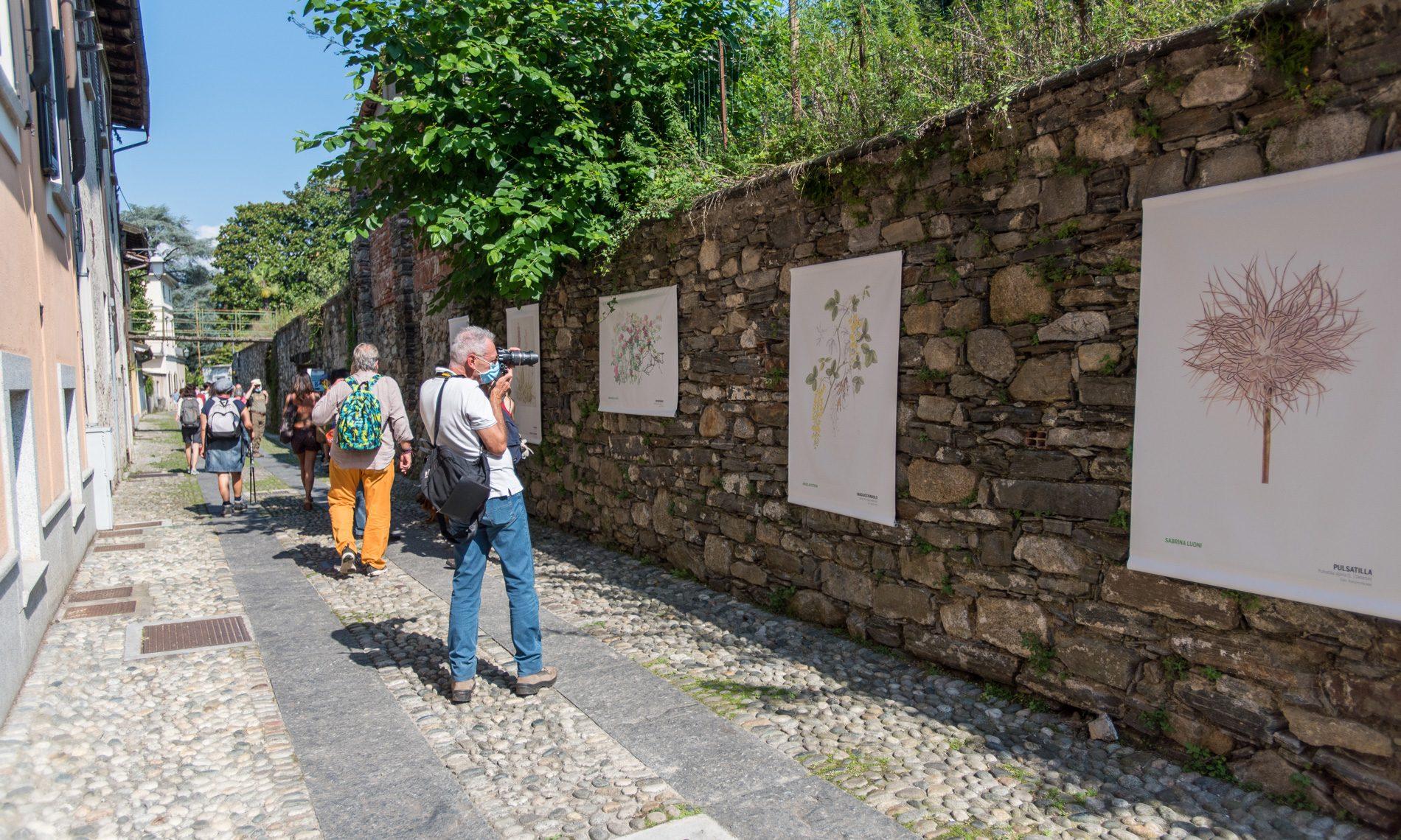 Herbarium vagans a Orta San Giulio