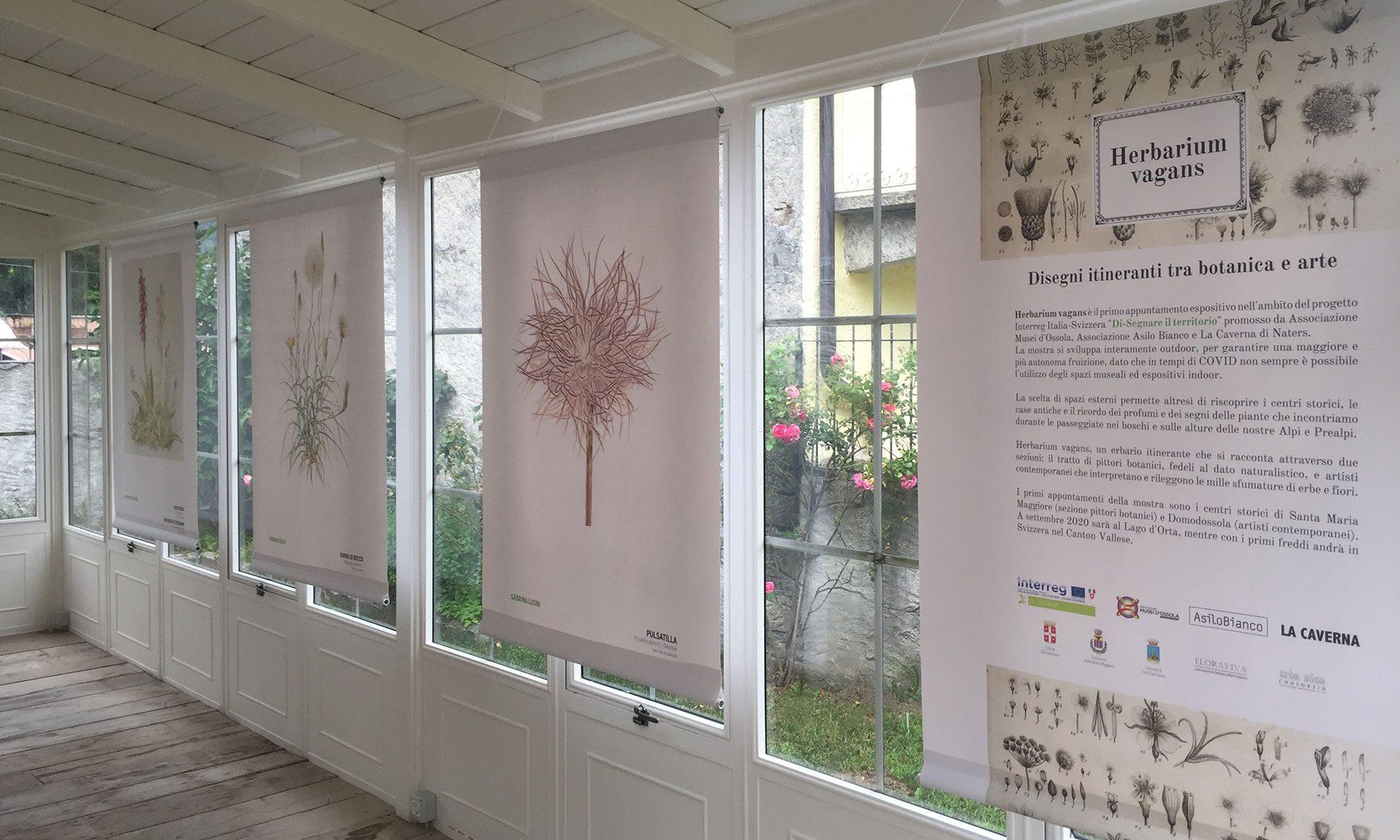 La mostra Herbarium vagans alla Casa del Profumo a Santa Maria Maggiore